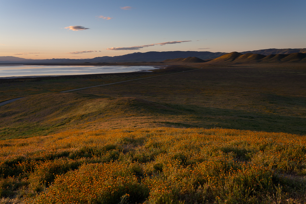 Day 2: Carrizo Plain